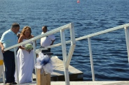 Wedding 215