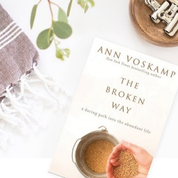 book-cover-thebrokenway
